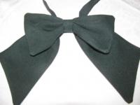 Kaklasaite-bante